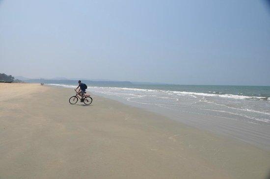 Holiday Inn Resort Goa: На великах!