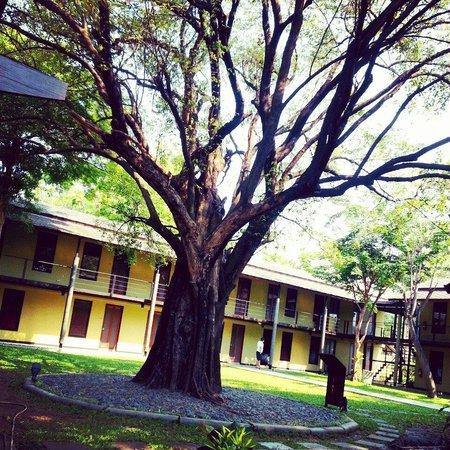 U Inchantree Kanchanaburi: พระเอกประจำโรงแรม
