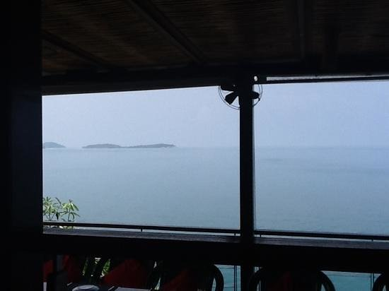 Dr. Frogs Bar & Grill: View from Dr Frog's