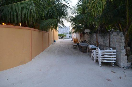Stingray Beach Inn: From the gate