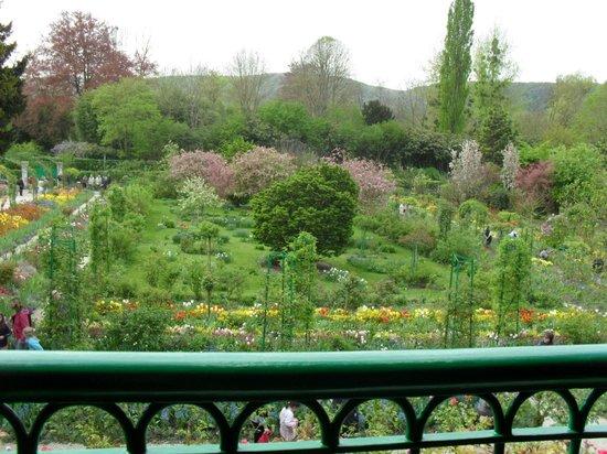 Maison et jardins de Claude Monet : le jardin