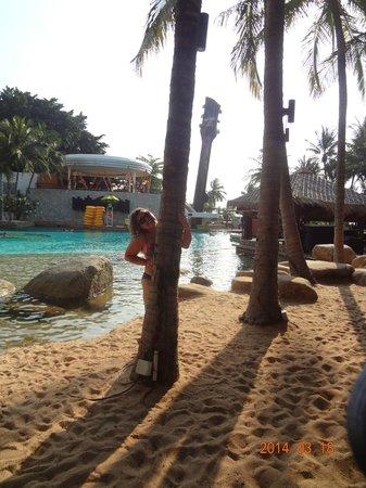Hard Rock Hotel Pattaya: территория бассейна