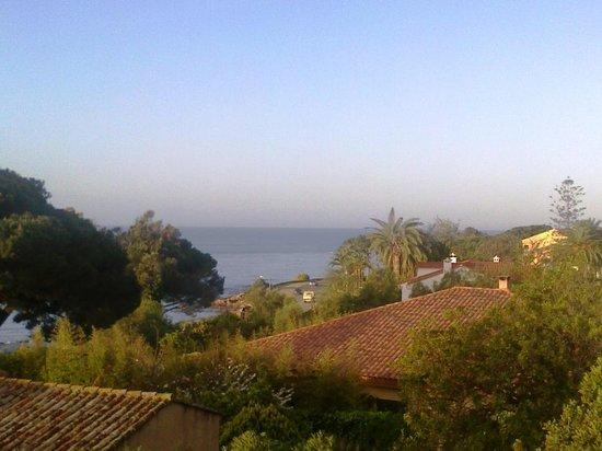Hotel La Pinede : depuis le balcon