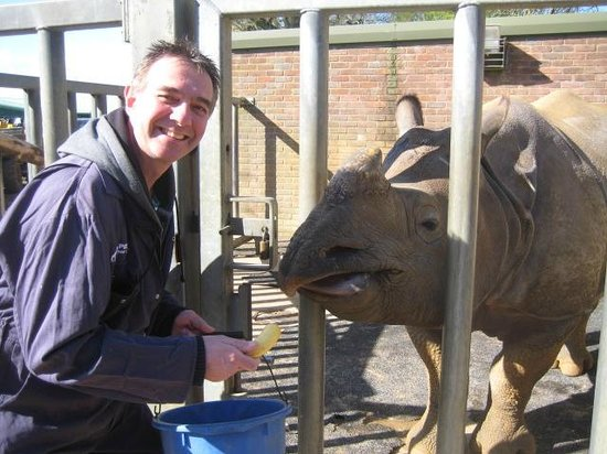 Zookeeper for a day at Whipsnade zoo: Feeding the Rhinos