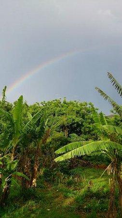 Kona Tau: desde el mirador con un arcoiris doble tras una tormenta