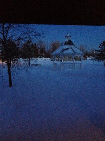 Cedar Meadows Resort & Spa: View from my room 5:30 am