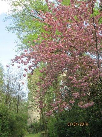 Campata del Ponte d'augusto nel giardino fiorito