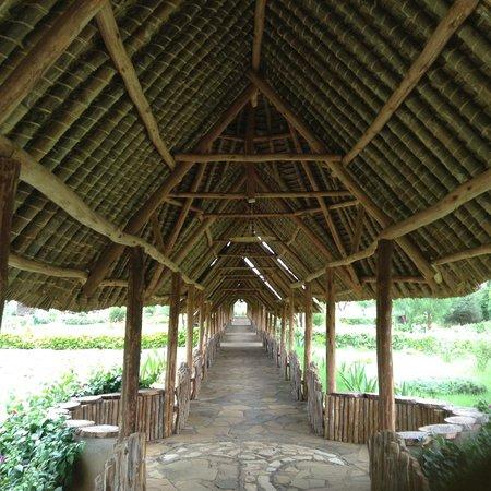 AA Lodge Amboseli: Walk Path