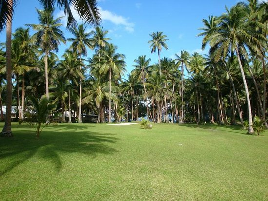 Naigani Island Resort: Barefoot Golf Course - they provide clubs but donate