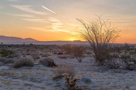 Borrego Valley Inn: Dawn on the desert - a few steps from our room!