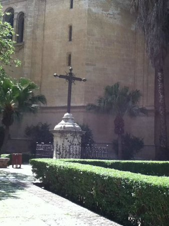 Malaga Cathedral : WONDERFUL EXPERIENCE, FULLY RECOMMENDED.