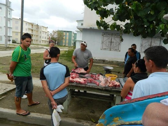 Hotel Playa Pesquero Resort, Suite & SPA: Local butchers