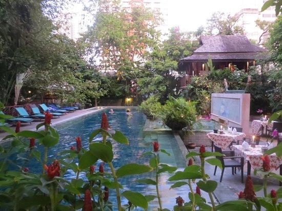 Ariyasomvilla : Pool oasis