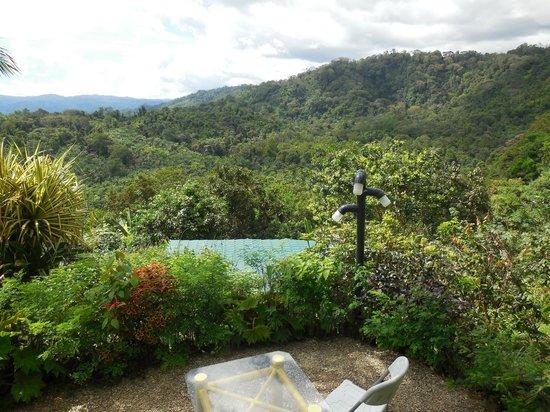 Hotel Palmeral Dorima : Aussicht