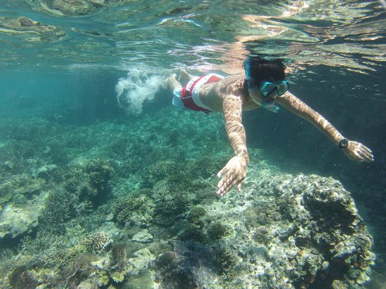 West Nusa Tenggara, Indonesia: crystal clear waters