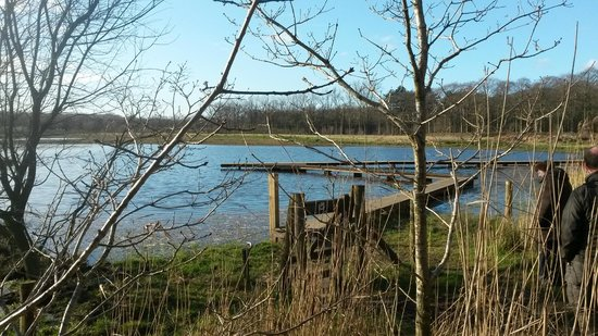 Provincial Domain Lippensgoed-Bulskampveld