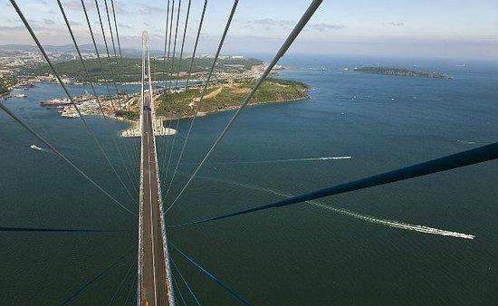 Bridge to Russky Island : Красота!!!!!