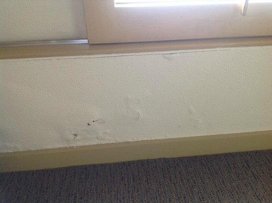 DoubleTree by Hilton Hotel Esplanade Darwin : Cracked and blistering wall
