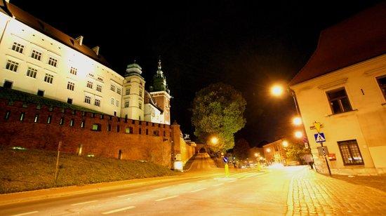 Château roya du Wawel : Wzgórze Wawelskie nocą