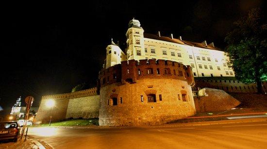 Château roya du Wawel : Wawel nocą
