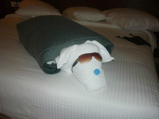 Coral Sea Waterworld Resort : towel art