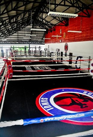 Superpro Samui : Enough space with 4 boxing rings