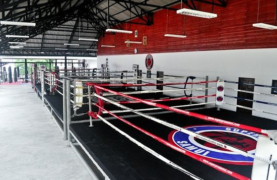 Superpro Samui : large training area