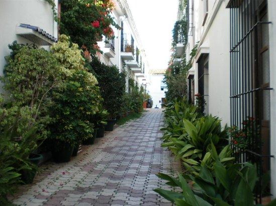 Casco antiguo de Marbella: Una de las calles del centro