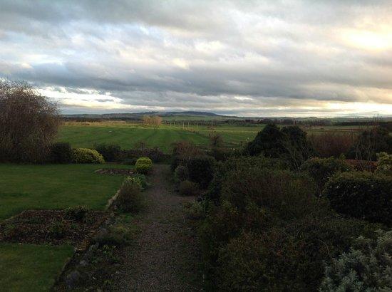 Cheswick, UK: Ladythorne House Garden