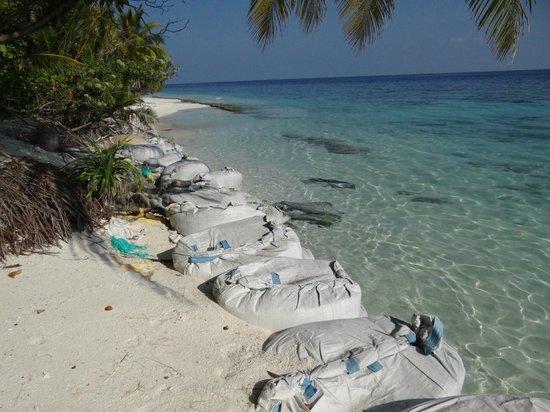 Madoogali Tourist Resort: La plage devant les bungalows 46 à 56