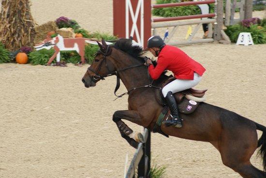 Kentucky Horse Park: Jumpers