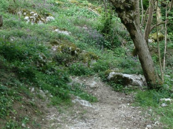 The Dicova Voda Spring: the way up to the spring