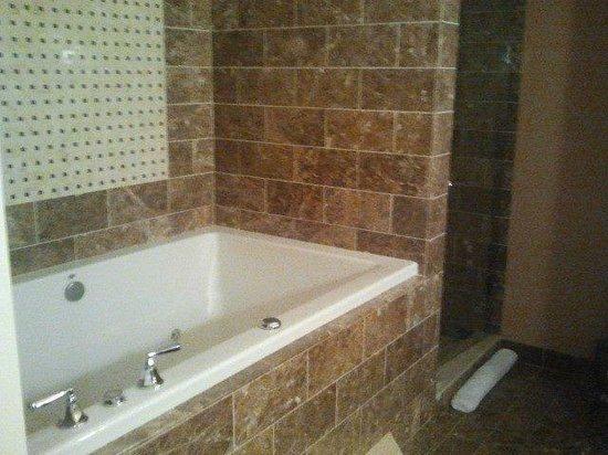 Kimpton Hotel Monaco Baltimore Inner Harbor : An amazing bathroom with a deep spa/tub.