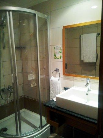 Buyuk Abant Oteli: oda banyosu