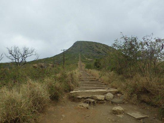 Koko Crater Trail: 階段