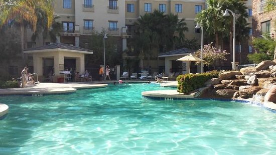 Staybridge Suites Phoenix/Glendale: Pool