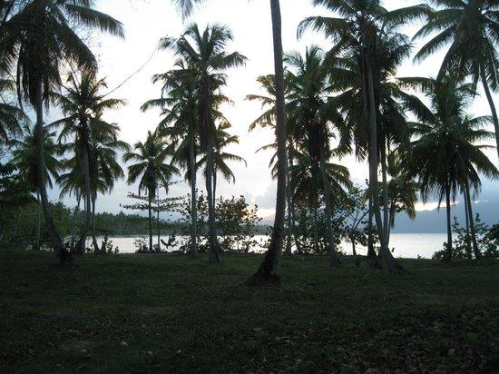 Grand Paradise Samana : Shady Area