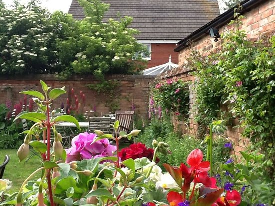 The College Arms: Our beautiful small back garden