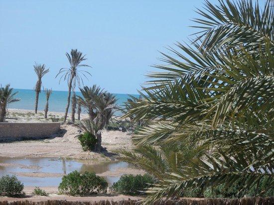 Seabel Rym Beach : vue de la chambre