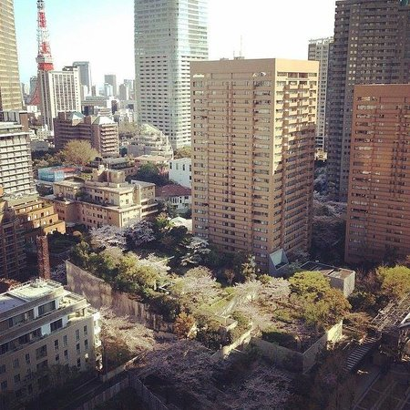Ana Intercontinental Tokyo: View from our room