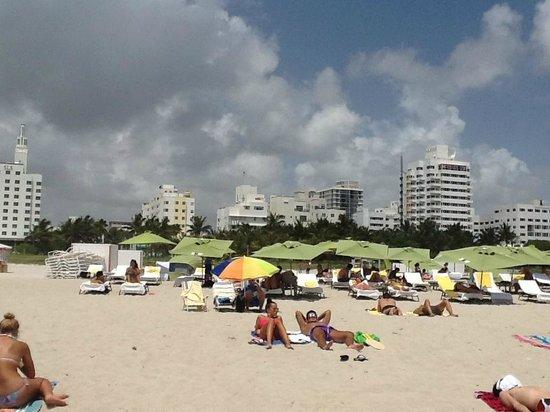 Kimpton Surfcomber Hotel: пляж
