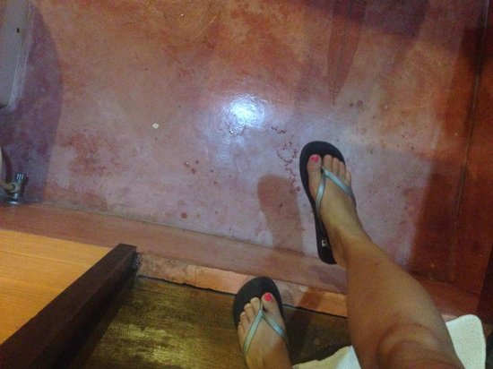 Railay Garden View Resort: The step down to the BR