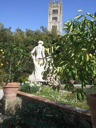 Palazzo Pfanner: Un scorcio del giardino