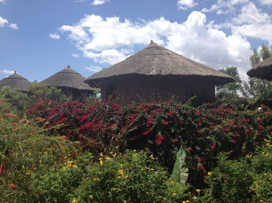 Tukul Village: Tukul huts