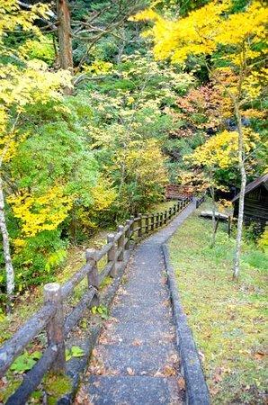 Shirakurakyo Valley: 階段