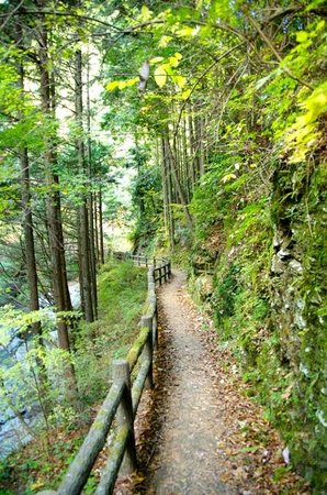 Shirakurakyo Valley: 散歩道