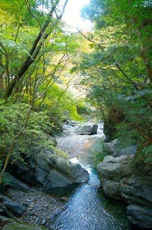 Shirakurakyo Valley: 白倉川