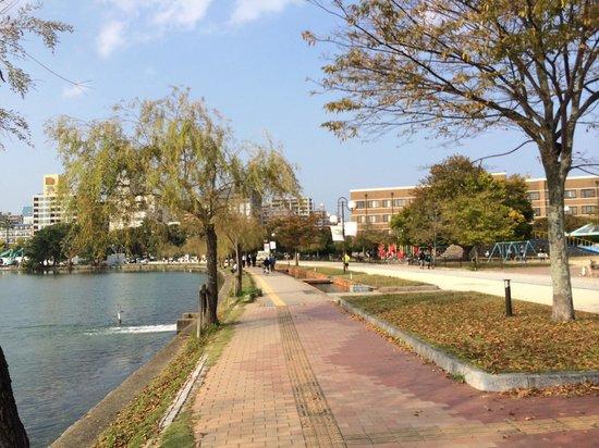 Ohori Park: お濠の散歩道
