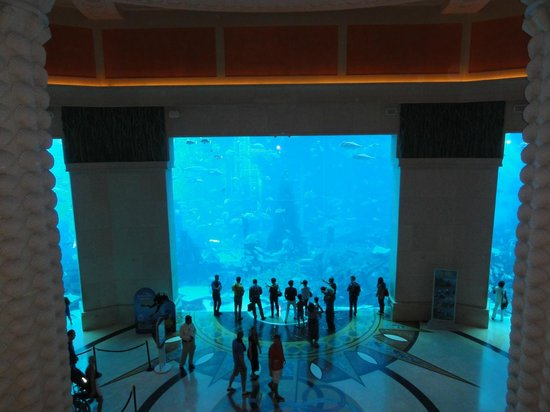 Atlantis, The Palm: 2
