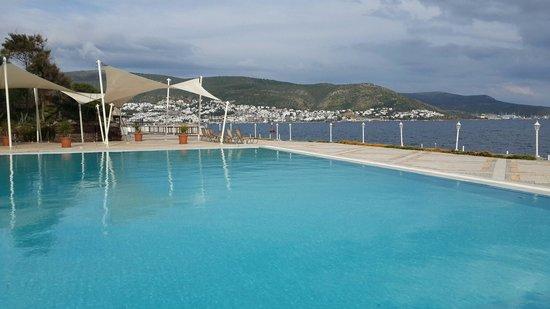 Hotel Mavi Kumsal: Deniz havuz